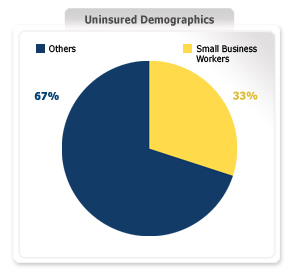 Small Business Uninsured Graph