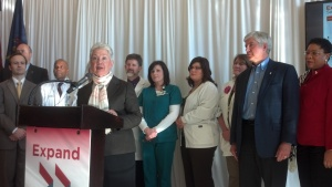 MPCA Executive Director Kim Sibilsky delivers remarks during a news conference in Lansing on February 6, 2013, promoting Medicaid expansion.